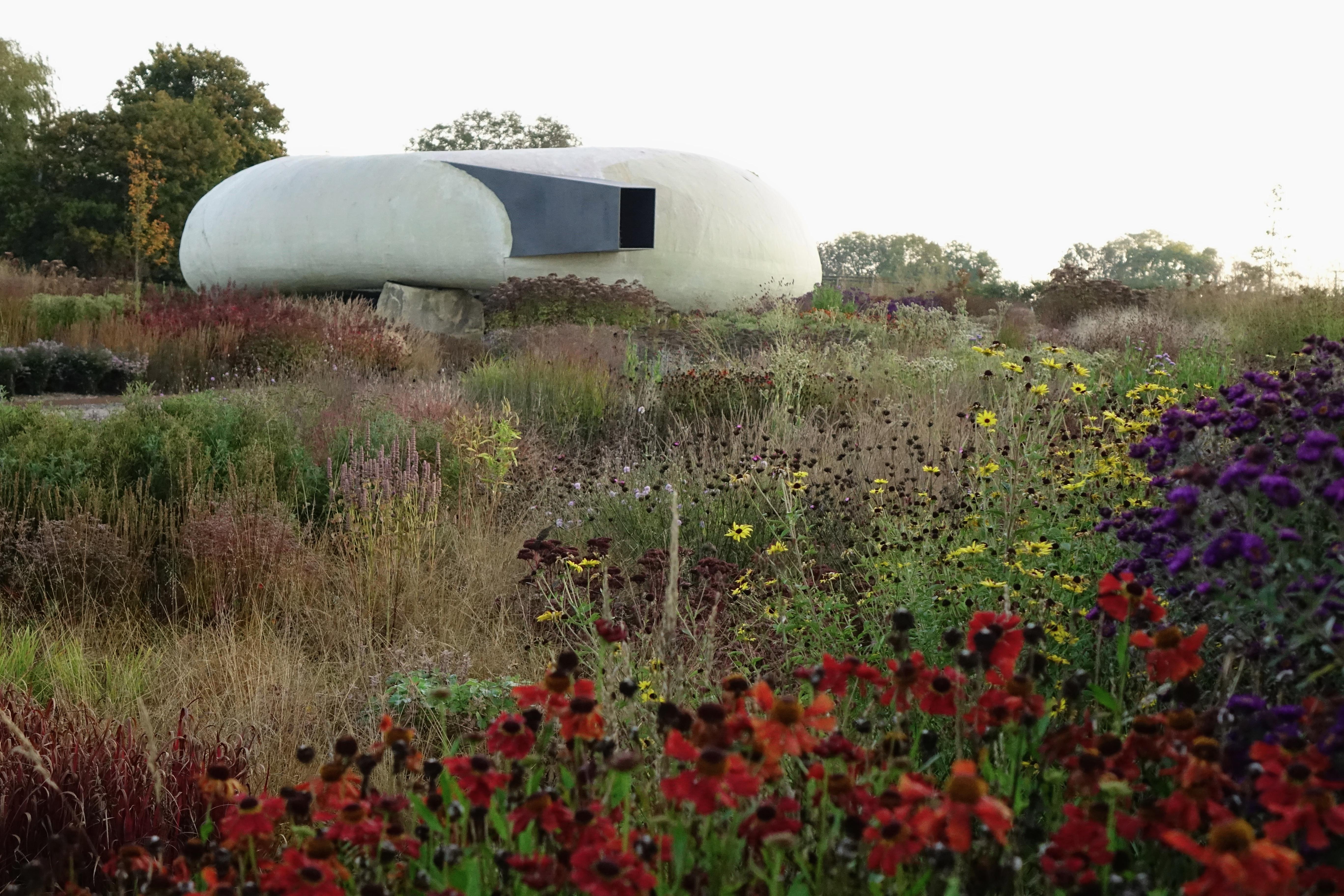Hauser & Wirth, perennial meadow Oudolf Field, London