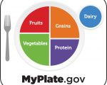 A diet guide from my plate.gov