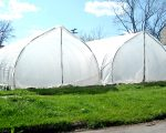 farming HOOP HOUSES AT ANDY CHAE'S FISHEYE FARMS IN CORE CITY.