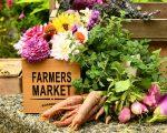 FARMERS MARKET PHOTO SHELLEY PAULS ; UNSPLASH
